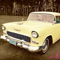 yellow.delray.1909ventilo