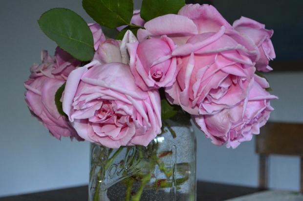 roses.13