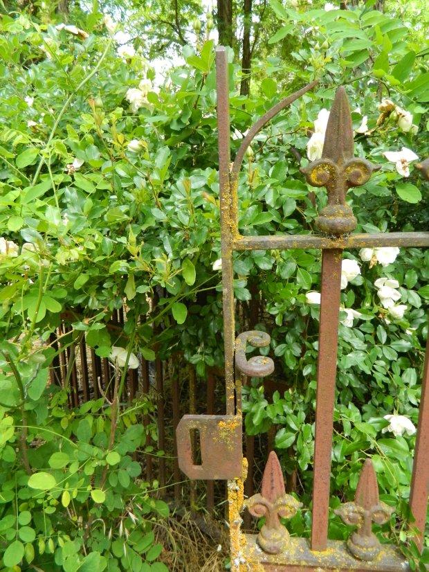 gate33